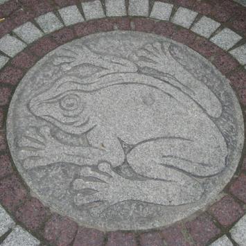 Żaba - symbol Świeradowa Zdroju