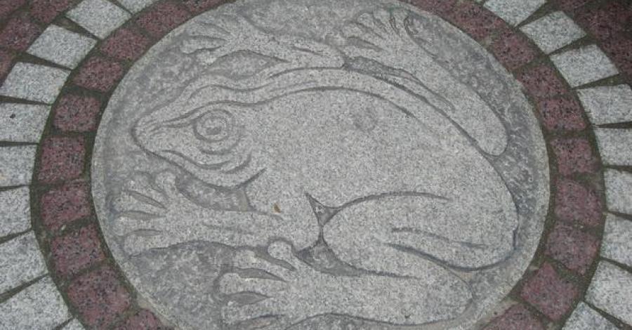 Żaba - symbol Świeradowa Zdroju - zdjęcie