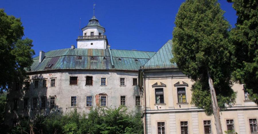 Zamek w Międzylesiu - zdjęcie