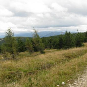 Góry izerskie, sokole i rudawy janowickie 2013