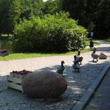 Pomnik kaczek w Nałęczowie
