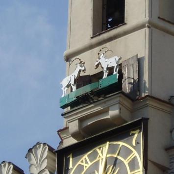 Poznańskie koziołki - zdjęcie