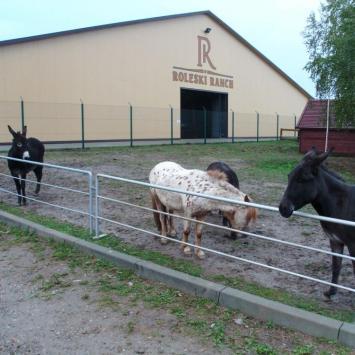 Roleski Ranch w Starych Żukowicach
