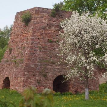 Ruiny pieca w Kuźniakach