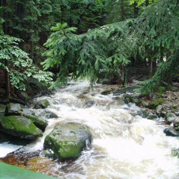 Wodospad Szklarki w Karkonoszach, Danusia