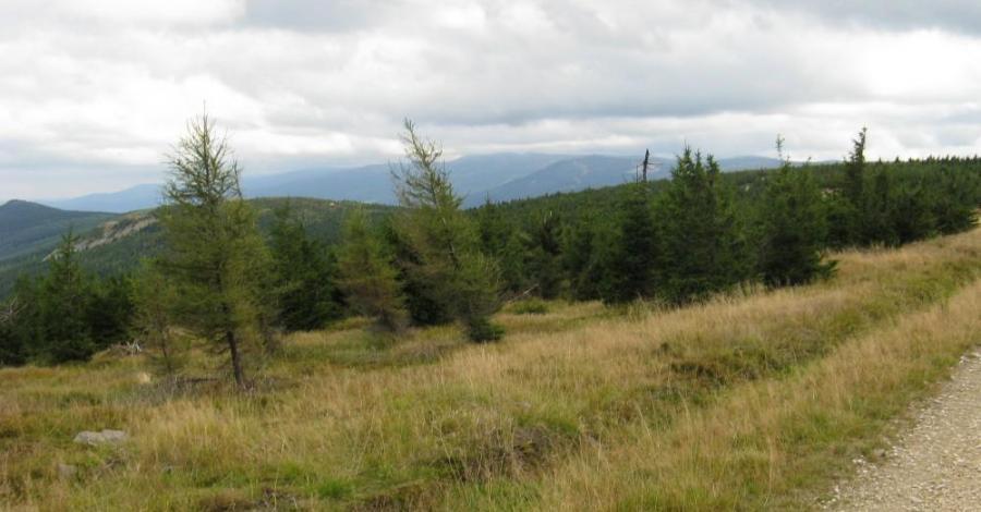 Góry izerskie, sokole i rudawy janowickie 2013 - zdjęcie