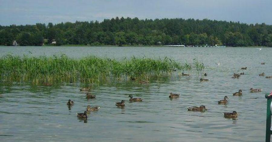Jezioro Czos w Mrągowie - zdjęcie