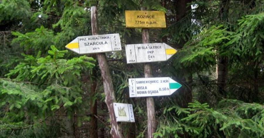 Kozińce w Beskidzie Śląskim - zdjęcie