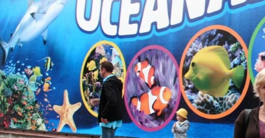 Oceanarium w Kołobrzegu - zdjęcie