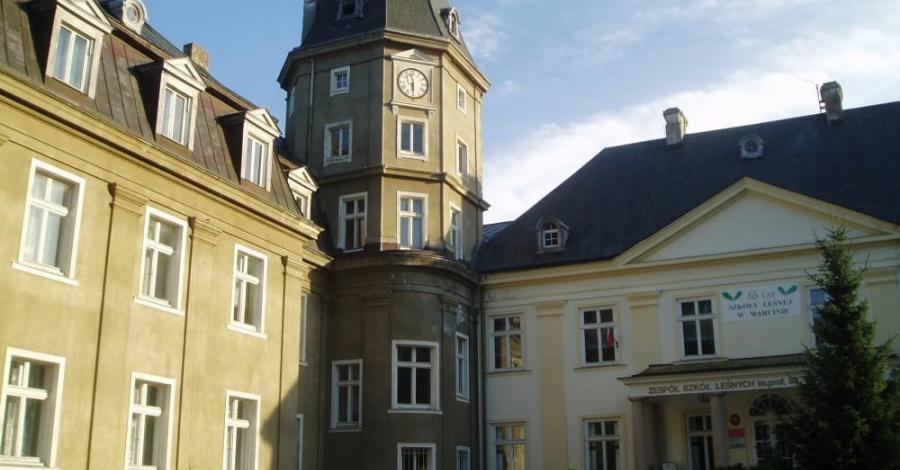 Pałac Bismarcka w Warcinie - zdjęcie
