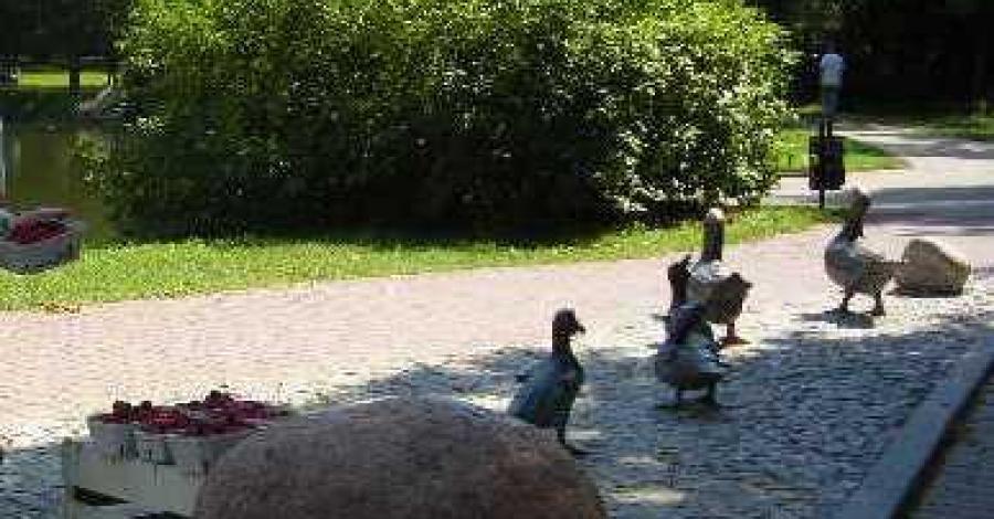 Pomnik kaczek w Nałęczowie - zdjęcie