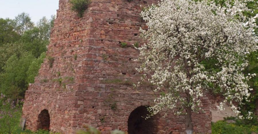 Ruiny pieca w Kuźniakach - zdjęcie