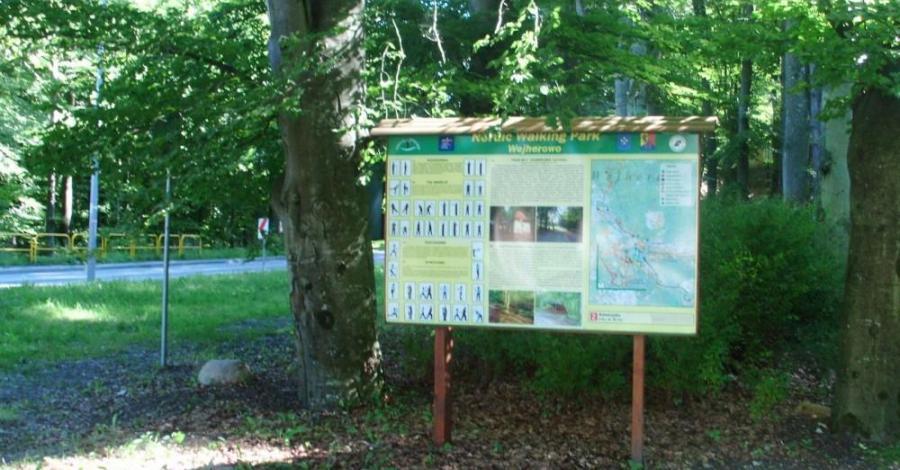 Trasy Nordic Walking w Wejherowie - zdjęcie