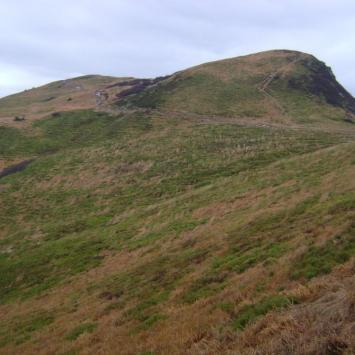 Widok na Tarnicę od strony Przełęczy Goprowskiej