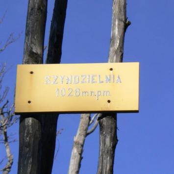 Szyndzielnia w Beskidzie Śląskim