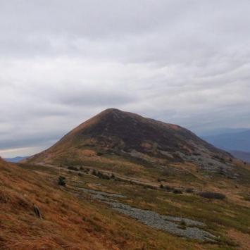 Widok na Tarnicę od strony Szerokiego Wierchu