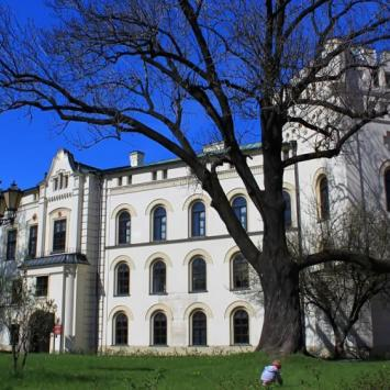 Satry zamek w Żywcu, Anna Piernikarczyk