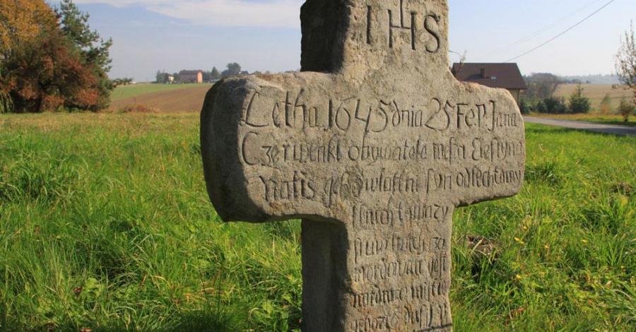Krzyż pokutny w Pruchnej - zdjęcie
