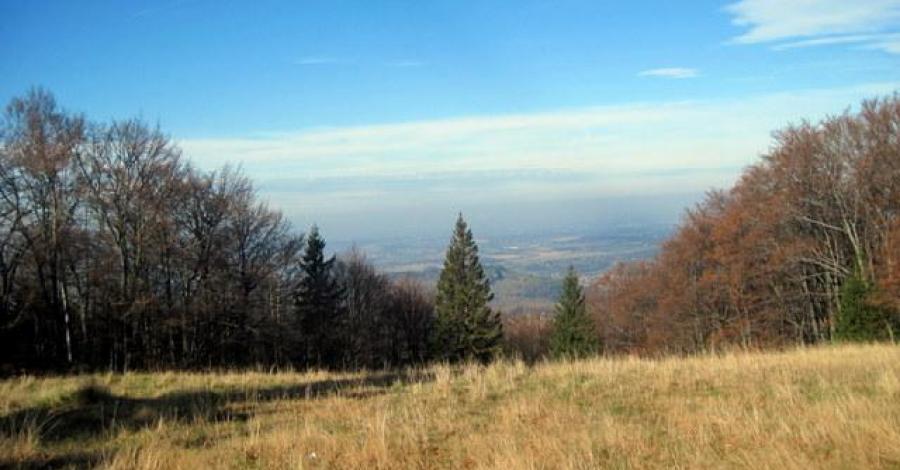 Mała Czantoria w Beskidzie Śląskim - zdjęcie