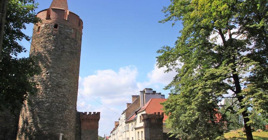 Mury obronne w Paczkowie - zdjęcie
