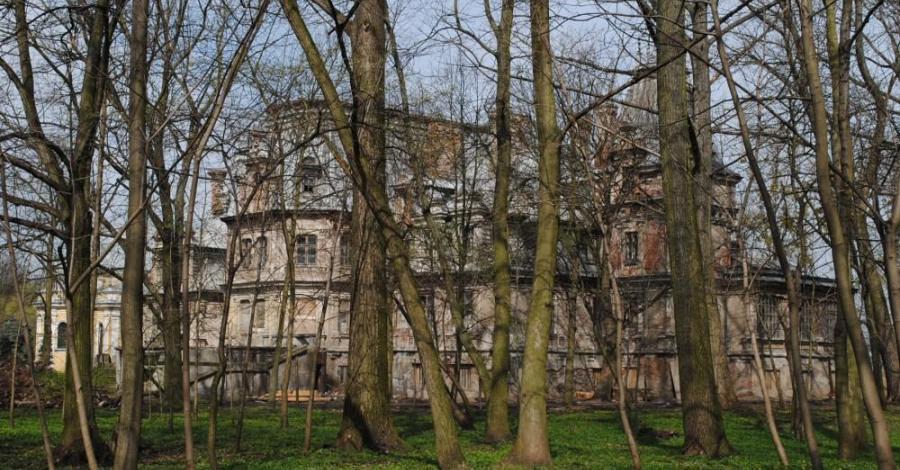 Pałac w Guzowie - zdjęcie