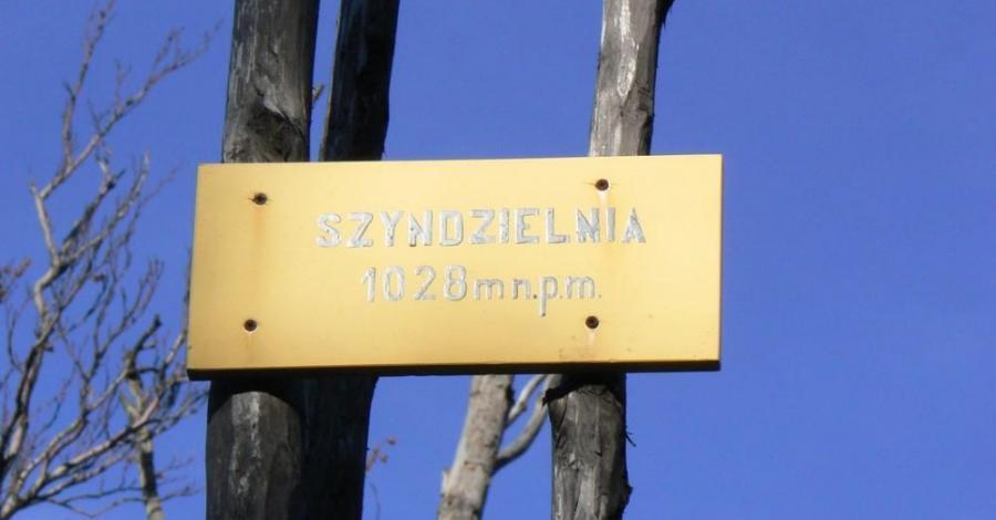 Szyndzielnia w Beskidzie Śląskim - zdjęcie