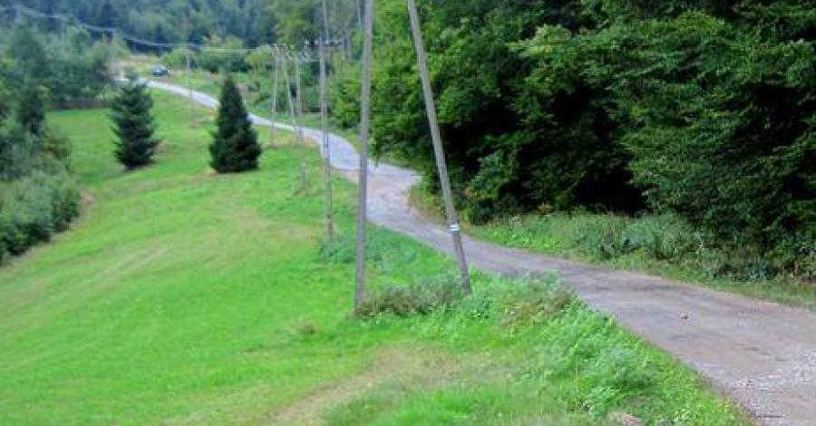 Zakrzosek w Beskidzie Śląskim - zdjęcie