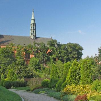 Katedra w Sandomierzu - zdjęcie
