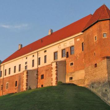 Zamek w Sandomierzu, Anna Piernikarczyk