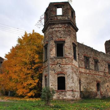 Zamek w Podzamczu Piekoszowskim