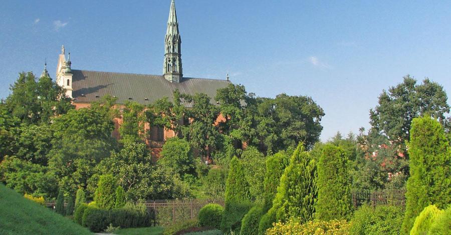 Katedra w Sandomierzu, Anna Piernikarczyk
