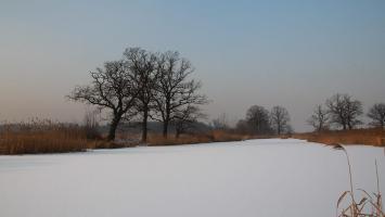 Szałsza - zdjęcie