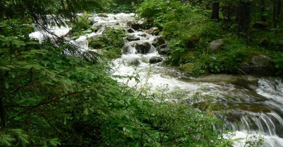 Dolina Olczyska w Tatrach, Katarzyna Jamrozik