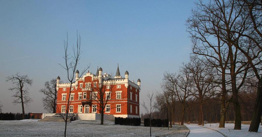 Pałac w Szałszy - zdjęcie