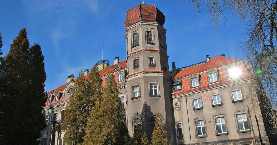 Pałac w Brynku - zdjęcie
