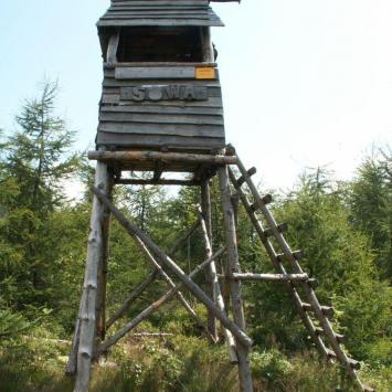 Jagodna w Górach Bystrzyckich