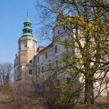 Zamek w Niemodlinie - zdjęcie