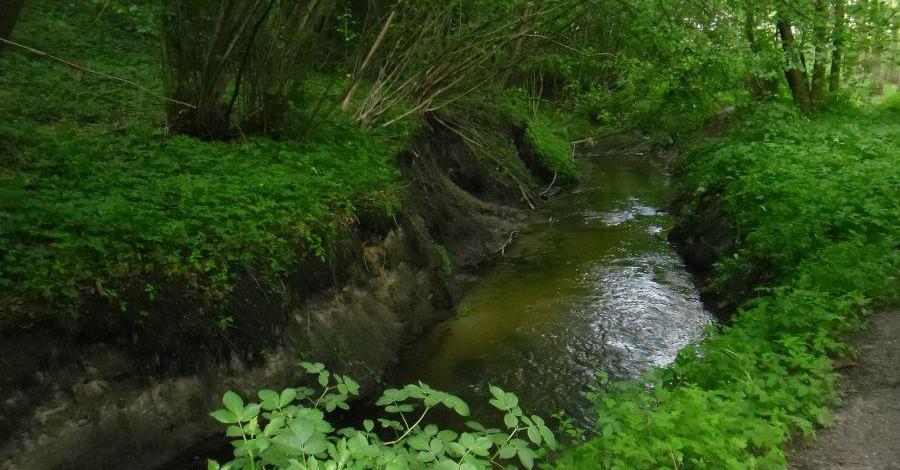 Przemęcki Park Krajobrazowy - zdjęcie