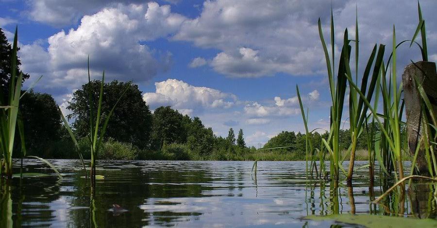 Waldekówka w Racławicach - zdjęcie
