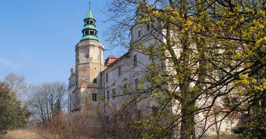 Zamek w Niemodlinie, Anna Piernikarczyk