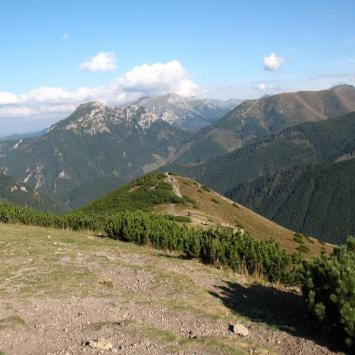 Grześ w Tatrach