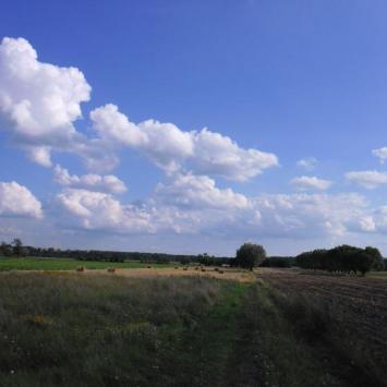 Park Krajobrazowy im. gen. Chłapowskiego