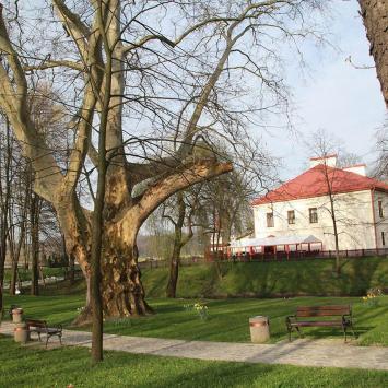 Zamek Dubiecko - zdjęcie