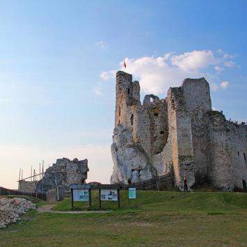 Zamek w Mirowie - zdjęcie