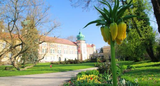Zamek w Łańcucie - zdjęcie
