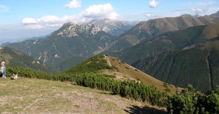 Grześ w Tatrach - zdjęcie