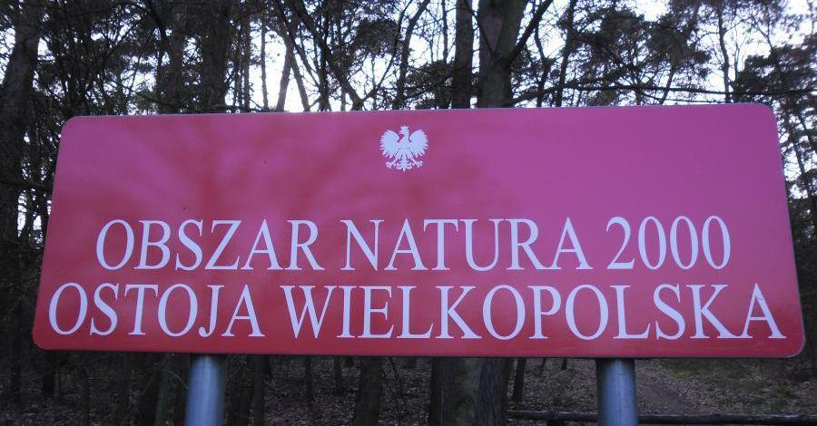 Ostoja Wielkopolska - zdjęcie