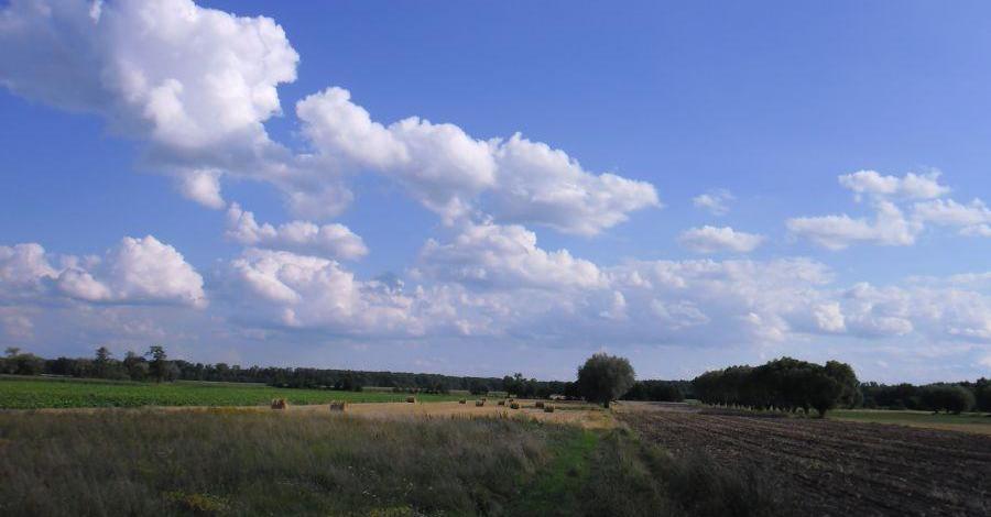 Park Krajobrazowy im. gen. Chłapowskiego - zdjęcie