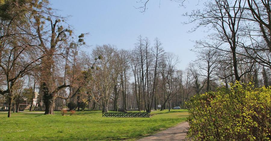 Park w Strzelcach Opolskich - zdjęcie