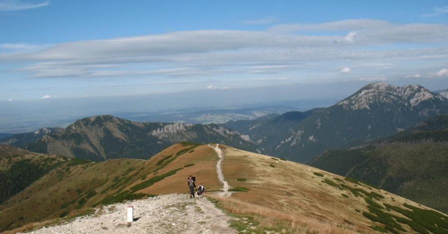 Rakoń w Tatrach - zdjęcie